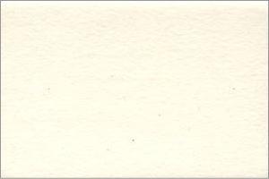 クリーム(WA21)
