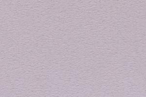 ラベンダー(SN15)
