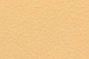 マシコット(SN17)