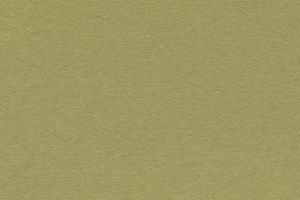 ウィローグリーン(SC91)